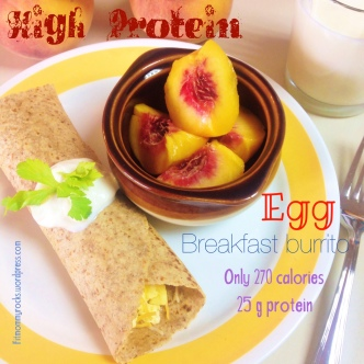 High Protein-- Egg Breakfast Burrito-- Only 270 Calories-- 25 g Protein
