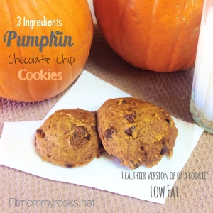 Pumpkin Chocolate Chip Cookies-- 3 Ingredients-- Low Fat