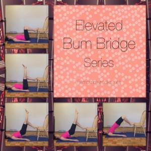 Elevated Bum Bridge Series