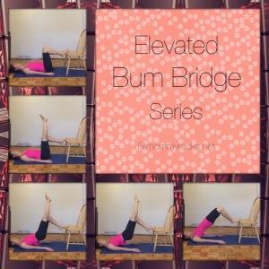 Elevated Bum Bridge Series