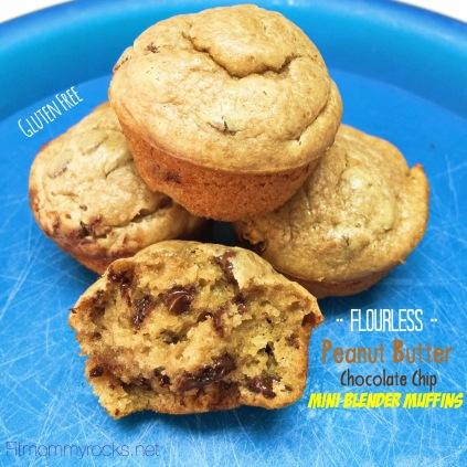 Flourless Peanut Butter Chocolate Chip Mini Blender Muffins